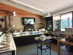 natural history centre