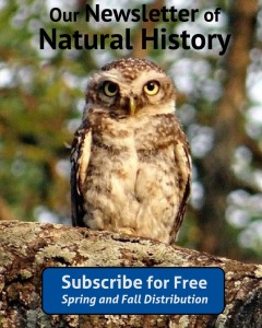 Natural History Newsletter Subscribe