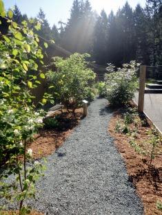 Ethno garden