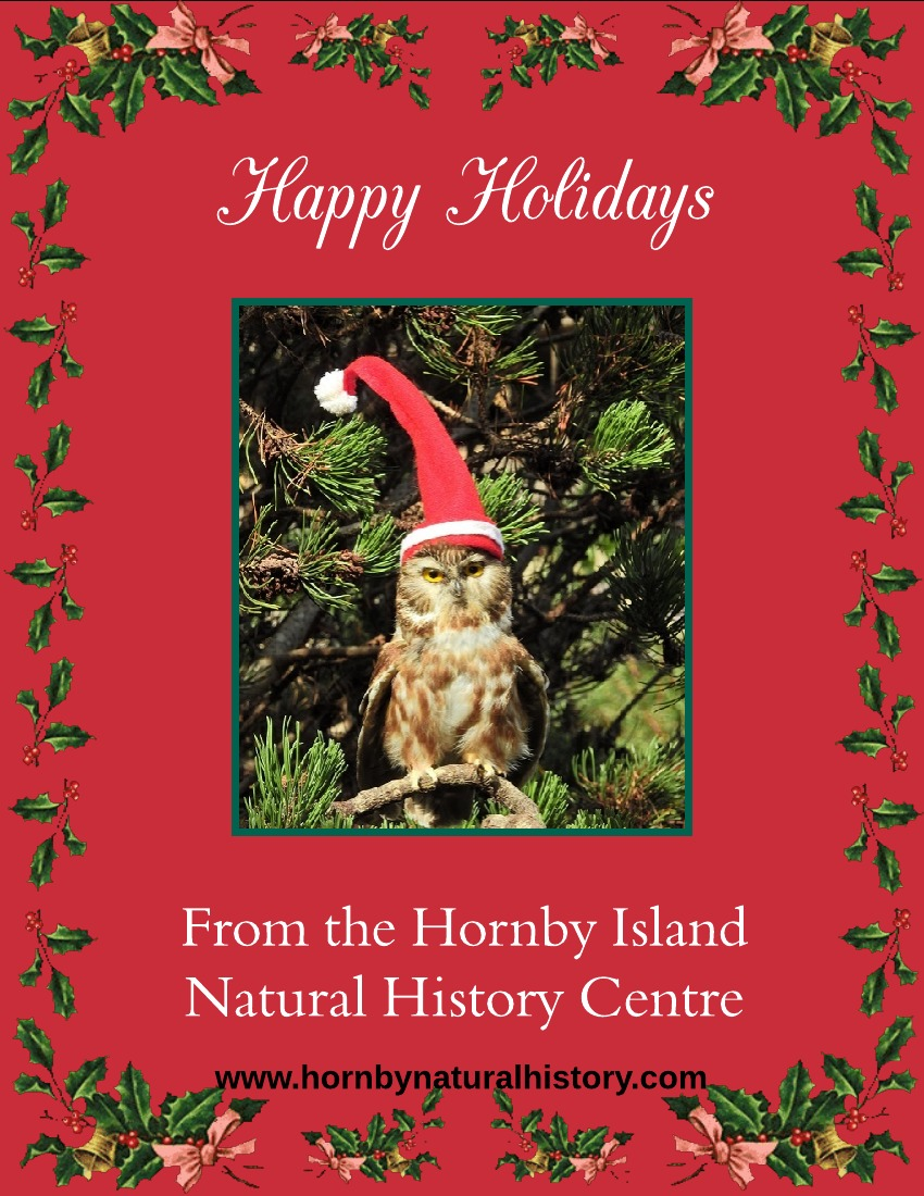 Seasons Greetings To All Hornby Island Natural History Centre