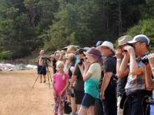 "Art Martell, ""Bird Walk – Hearing, seeing and enjoying our local birds"""