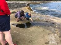 A Tidal Investigation