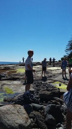 Hornby Rocks! Exploring the unique geology, with Dr. John Cox