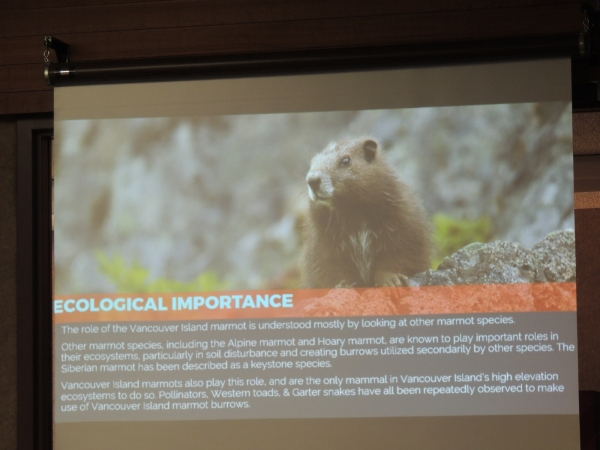 """""""Vancouver Island Marmot Recovery"""" with Adam Taylor."""