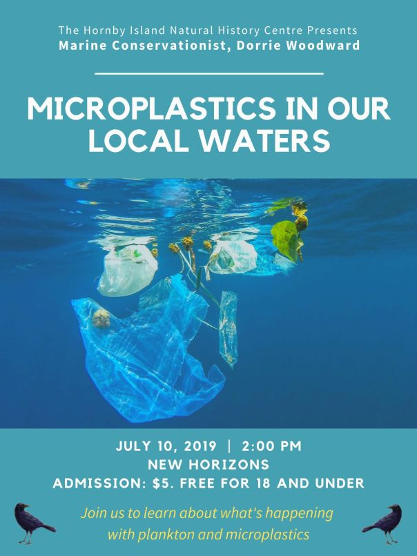 Microplastic in our local waters (1)